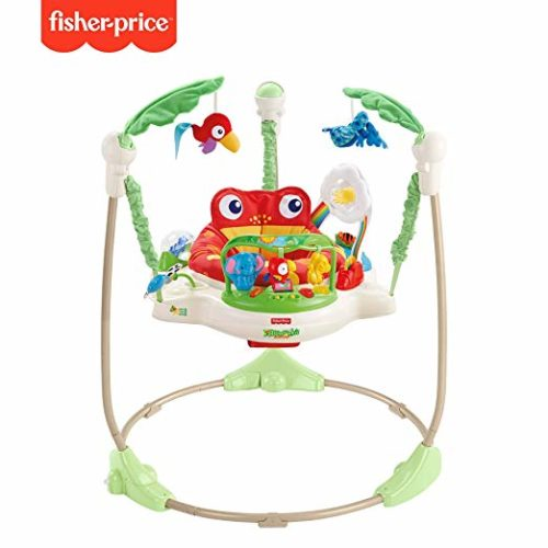#5 Fisher-Price Rainforest Jumperoo